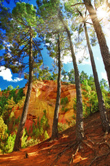 forest and rocks of natural ochre in Roussillon, Provence, Franc