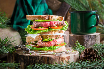 Homemade double sandwich with meat and vegetables