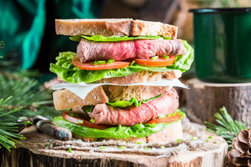 Tasty homemade sandwich with beef