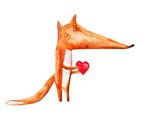 Fox with heart. vector. watercolor