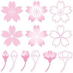 桜 花びら つぼみ