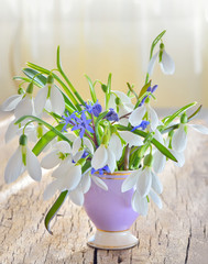 snowdrops in vase on old wood