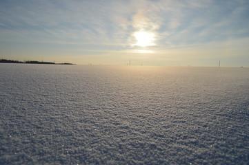 поле снежное