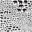 silhouettes of wildlife Asia