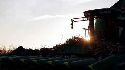 large plow of harvester for harvesting of corn