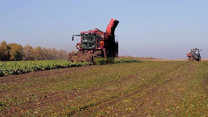 harvesting with using combine and tractor