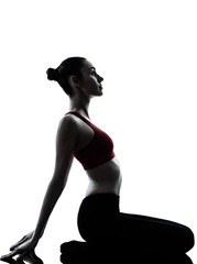 woman exercising yoga meditation silhouette