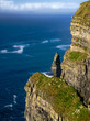 Cliffs of Moher in County Clare - 76108040