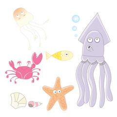 Sea / Marine animals collection