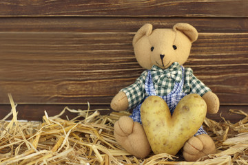Teddybär mit Kartoffelherz