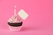 Pink birthday cupcake with placard - 76116248