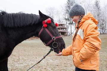 Young girl feeding a horse