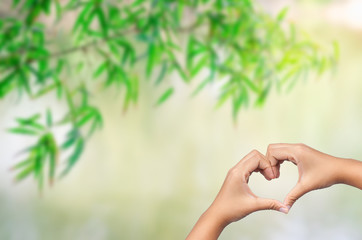 hand in heart shape with bamboo leaves background