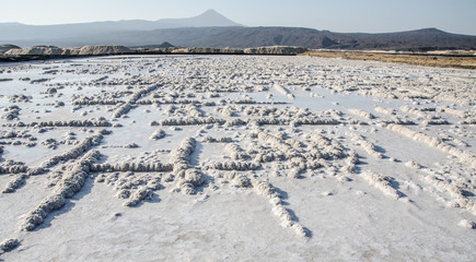 Danakil, Afar Land, salt mining