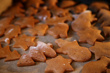 Gingerbread. The Christmas cookies
