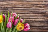 Fototapety tulpen