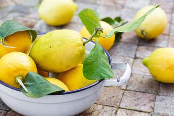 whole lemons with leaves