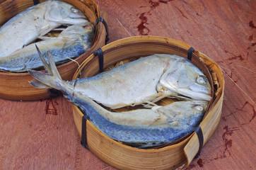 short mackerel