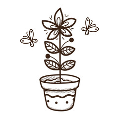 Plant growing in a pot.