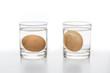 Leinwanddruck Bild - Test for Fresh and rotten eggs