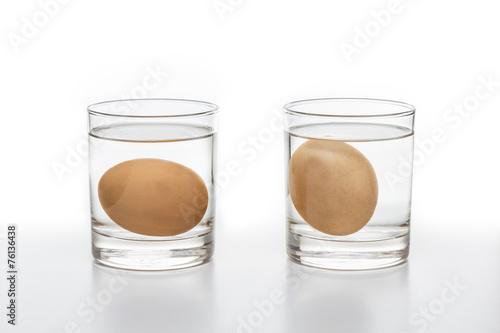 Leinwanddruck Bild Test for Fresh and rotten eggs
