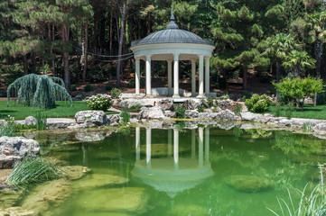 Пруд с водяными лилиями в парковом пруду