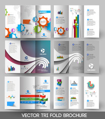 Business Tri-fold Brochure Design Bundle.