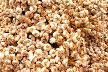 Garlic at the market