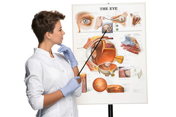 Optician or oculist woman telling about structure of the eye