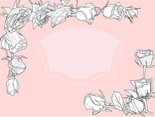 white rose sketches frame on pink background