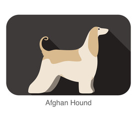 Afghan Hound dog breed standing flat icon design