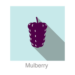 Mulberry fruit flat icon design