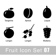 Fruit black icon design set