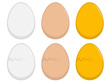 Egg Illustration - 76146695
