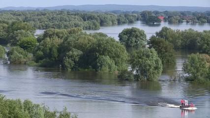 Überflutete Elbe in Mecklenburg-Vorpommern