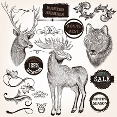 Collection of hand drawn animals, labels and swirls in vintage s