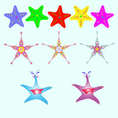 Set of sea stars of different colors
