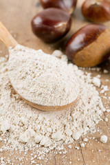 chestnut flour in a wooden spoon