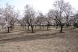 Parque Quinta Los Molinos
