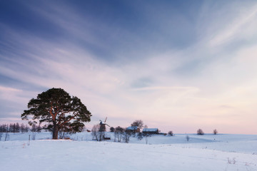 Winter rural landscape with pine and mill