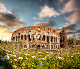 Colosseum with spring flowers in Rome, Italy
