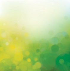 Vector  bokeh background green and yellow colors.