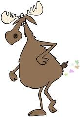 Bull moose farts