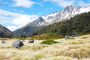 Scenic view from Travers-Sabine Circuit, Nelson Lakes NP