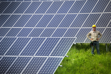 Technician standing among solar panels