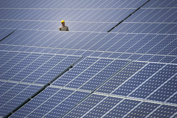Technician inspecting solar panels