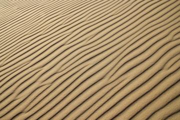 Beach sand. Arena de playa