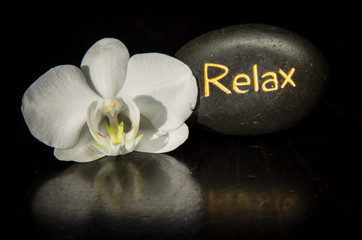 word relax and white orchid