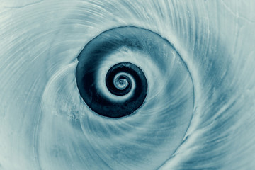 Cyanotype spiral