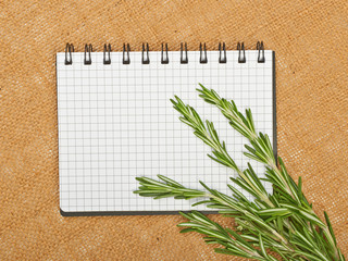 Sprigs of rosemary and notebook on canvas